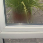 Failed double glazed unit with misted glass