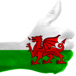 Wales flag thumbs up